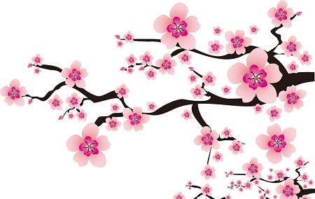 春分の日の画像