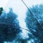 北海道には梅雨の時期がないというのは嘘?実はある?