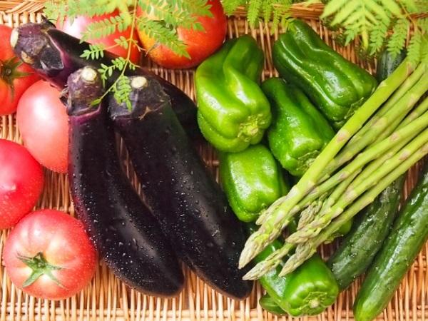 夏野菜の画像