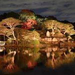 六義園の紅葉の見頃のライトアップ情報【2016年版】