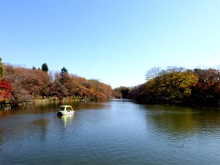 七井橋からの景観