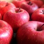 陸奥というりんごの品種の特徴について