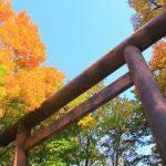 北海道神宮で七五三!混雑状況や初穂料はいくら?