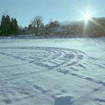 仲冬の候を使う時期はいつ?意味や簡単な文例も紹介