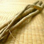 ごぼうに含まれる食物繊維は大切!理由は水溶性食物繊維にあり