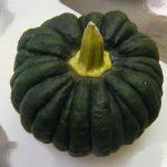 かぼちゃの種は栄養があるから捨てるのは勿体無いって本当?