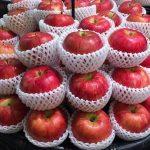 りんごの皮には栄養があるの?農薬が心配…その真相とは?
