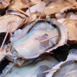 牡蠣の名産地はどこ?漁獲量日本一はやはり広島!美味しいのは?